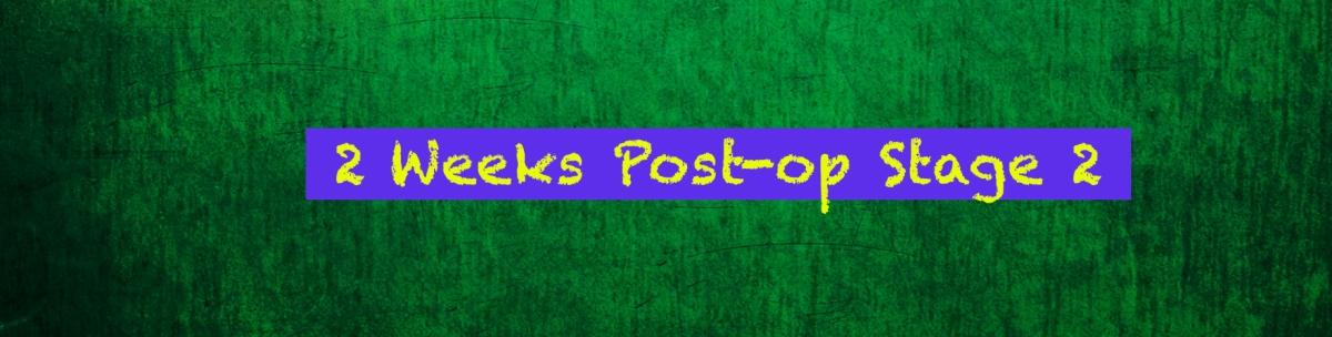 2 Weeks Post-Op Stage 2 (Semi-Rigid Rod & TesticularImplants)